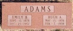 Emily V Adams