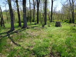 Carter Farm Cemetery