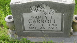 Nancy F <I>Johnson</I> Carroll