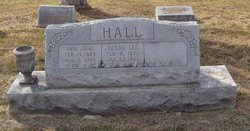 Ann Jane <I>Gasher</I> Hall