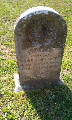 Lucy A Bobbitt