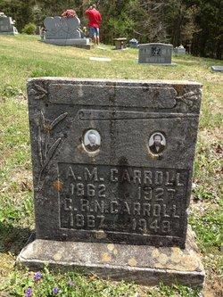 C. B. Nettie <I>Arnold</I> Carroll