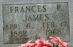 Frances Ellen <I>Prine</I> James
