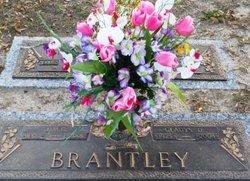 Jim E. Brantley