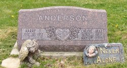 Chloie Mae <I>Murphy</I> Anderson