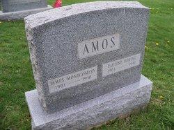 Pauline <I>Boring</I> Amos