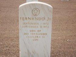 Fernando Aguilera, Jr