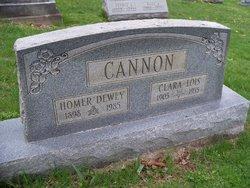 Homer Dewey Cannon