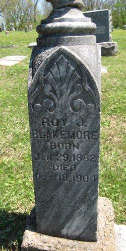 Roy J. Blakemore