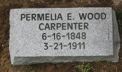 Permelia Emiline <I>Wood</I> Carpenter