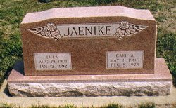 Carl A Jaenike