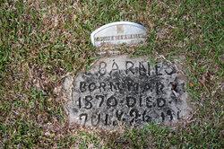 Callie Lee <I>McCormick</I> Barnes