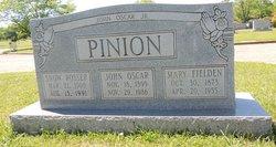 "Mrs Nancy Jane ""Snow"" <I>Rosser</I> Pinion"