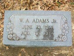 William Arthur Adams, Jr