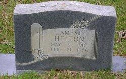 James E Helton