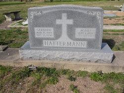 Gerhard Hattermann