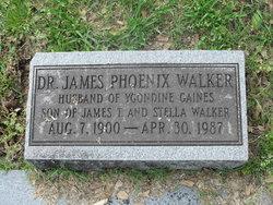 Dr James Phoenix Walker