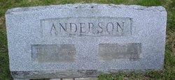 P Edwin Anderson