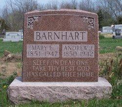 Andrew Jackson Barnhart