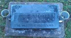 Carrie Rebecca Busch