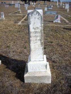 Andrew Benton Havins