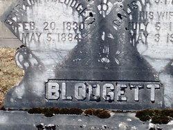 Ephraim F. Blodgett