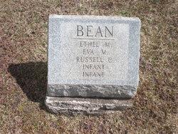 Infant Bean