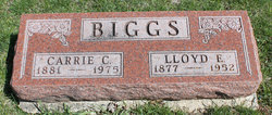 Carrie C Biggs