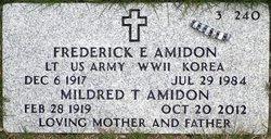 Frederick Elias Amidon