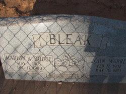 John Warren Bleak