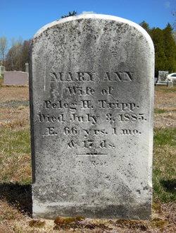 Mary Ann <I>Reed</I> Tripp
