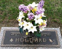 Sandra V Hoggard