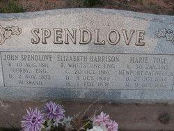 Elizabeth Harrison Spendlove