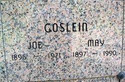 Joseph E Goslein