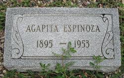 Agapita <I>Herrera</I> Espinoza