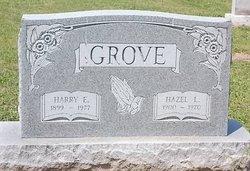 Harry Edgar Grove