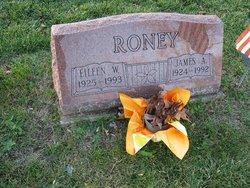 Eileen W Roney