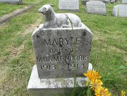 Mary E Norris