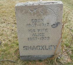 Alice Shackley
