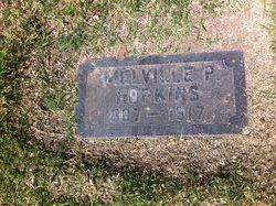 Melville P Hopkins