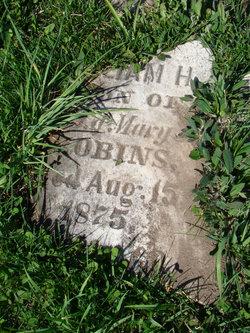 William H. Robins