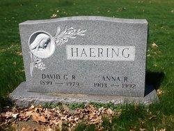 Anna R Haering