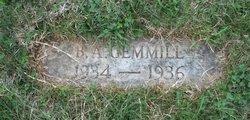 Beverley Ann Gemmill