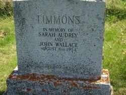 John Wallace Timmons
