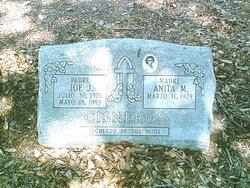 Anita M. Cisneros