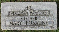 Mary Posadny