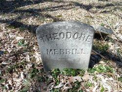 Theodore Merrill