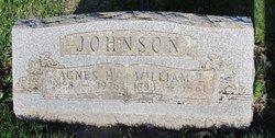 William L Johnson