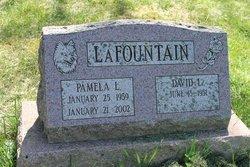 Pamela L Lafountain