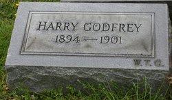 Harry Godfrey